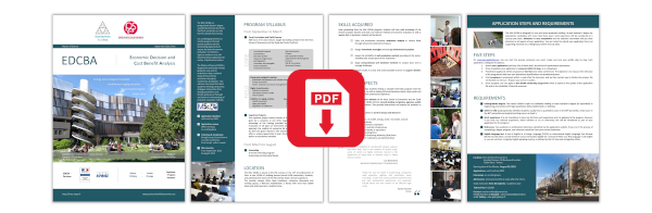 Decision pdf analysis and economics project